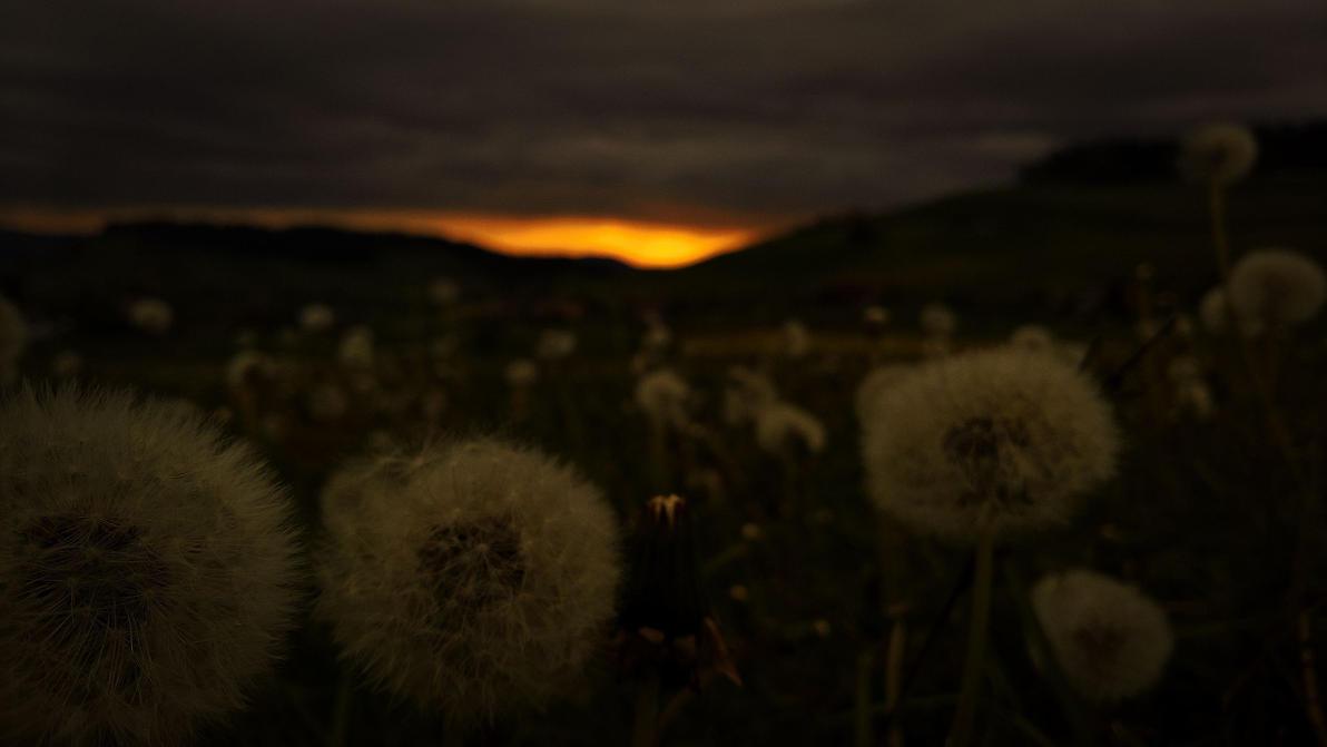 Sunset in Biglen by Redstone--Army