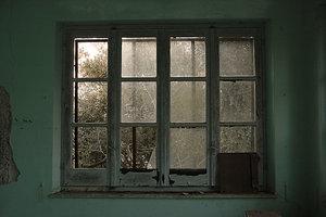 Green Prison by Windowsity