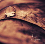 Crying Autumn