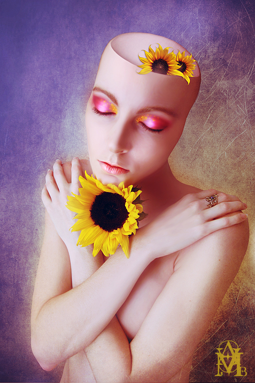 Where Sunflowers Grow by IIMadhoshiII