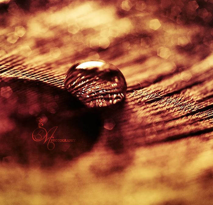 Gold by AbaddonArt