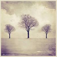 Fragile Winter by AbaddonArt
