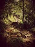 The Paths We Wander III