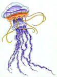 Jellyfish Purples