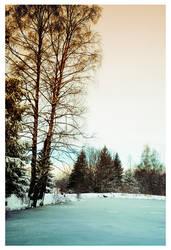 Schlipak forest by leonard-ART