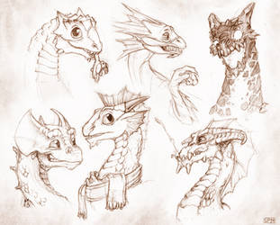 Baby Dragon Sketches, page 2! by SPipes