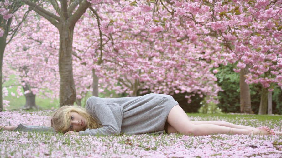 blossom beauty 2