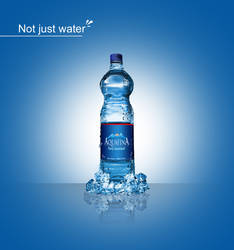 Aquafina Water Bottle by KhaledElkady