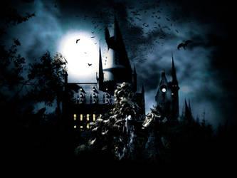 Hogwarts Terrible Manipulation by CemKarabulut