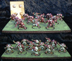 Bloodbowl orc team