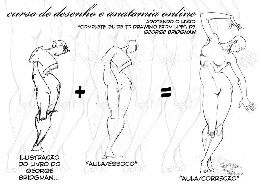 Lujo Curso De Anatomía En Línea Festooning - Imágenes de Anatomía ...