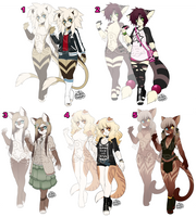 Anthro Kitty Adopts [CLOSED] by PumpkinSugar
