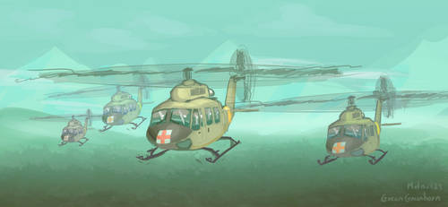 Hueys in formation