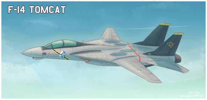 (Ace Combat 5) Wardog F-14 Tomcat