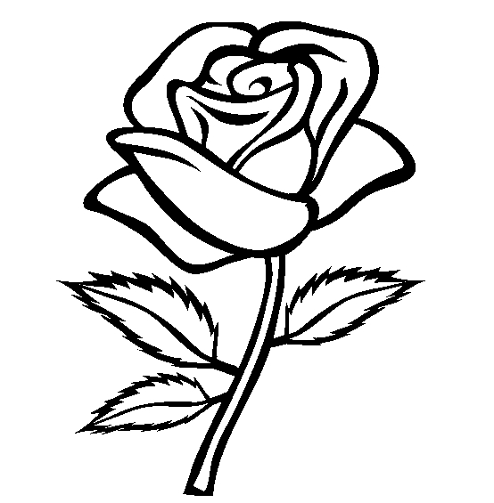 rose line art by icerosedrag0n on deviantart rh deviantart com rose line art vector rose arterial line