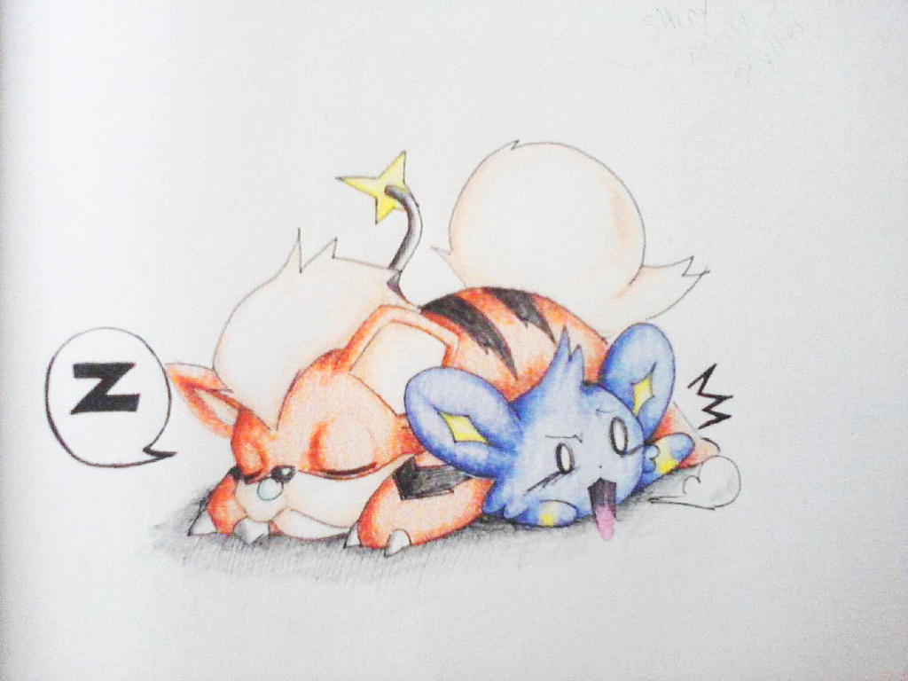 Poor Shinx by LilliM00