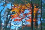 Forest Autumnal Monet