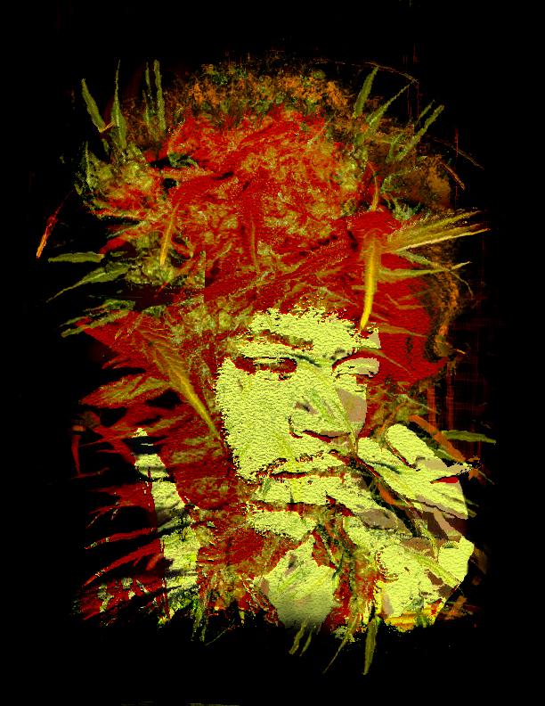 Jimi Hendrix T-Shirt Idea by amhaley