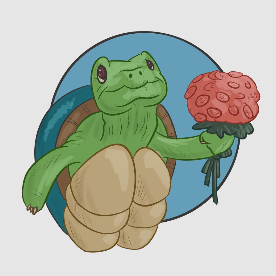 Turtle by predatorslow