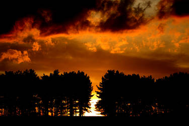 Tonights Lovely Sunset by philbertk