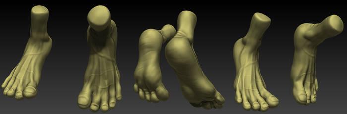 Anatomy Study 2014 Feet