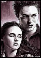 Twilight Revisited by S-von-P