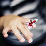 her butterfly summer. by gloeckchen