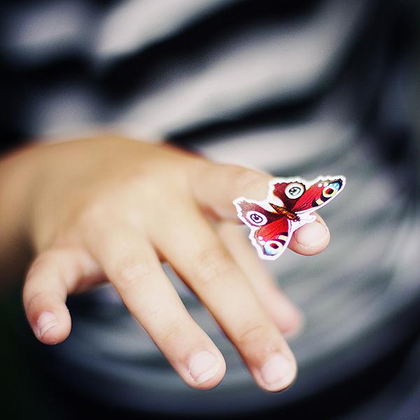 her butterfly summer.