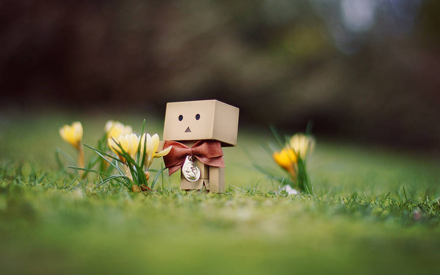 Danbo March Wallpaper. by gloeckchen