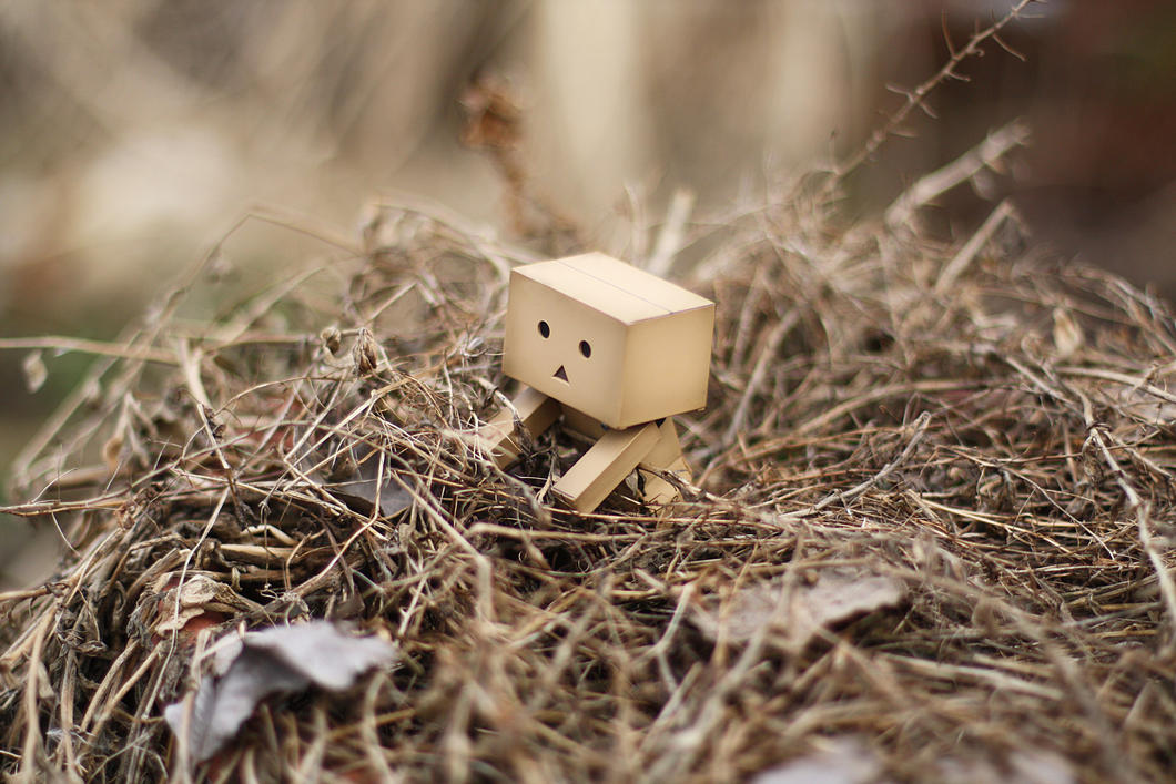 Danbo March Wallpaper II