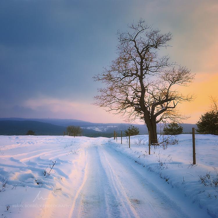Snowy Tales by markborbely