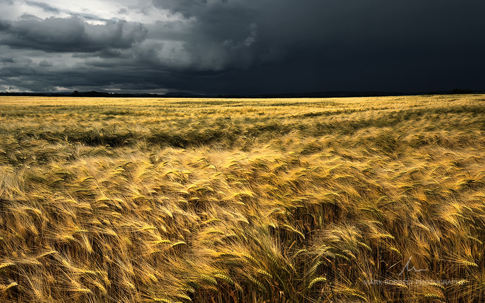 Darkness  Rising by markborbely