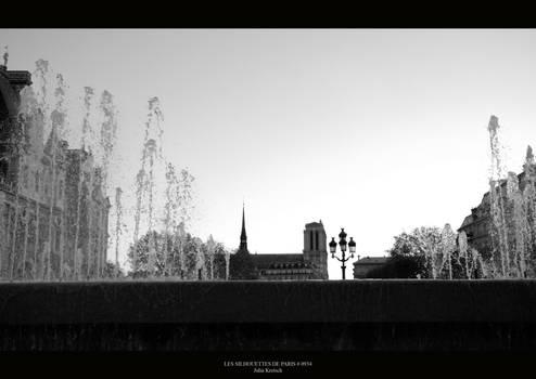 Les silhouettes de Paris 0934