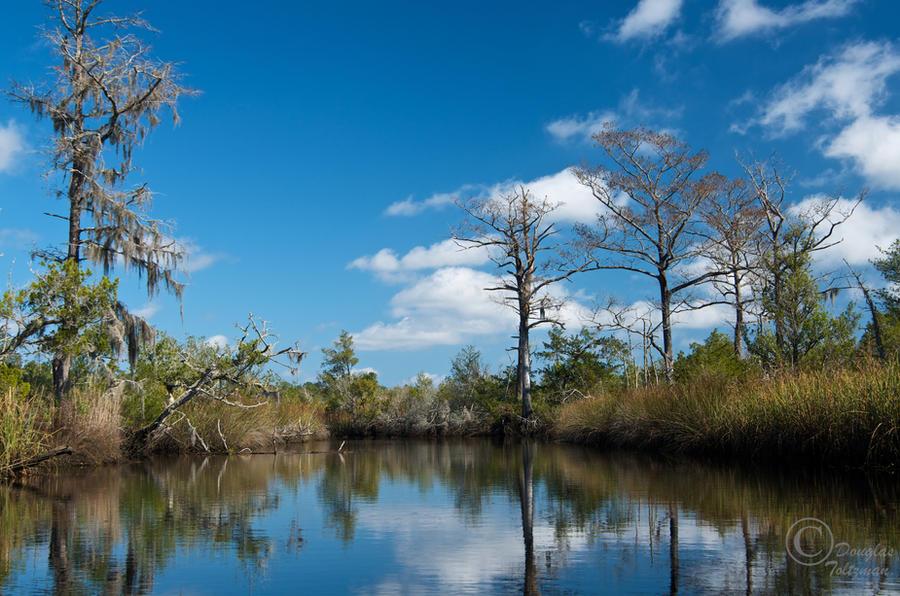 Pretty View, Sad Story by MarshExplorer