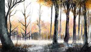 Winter Forest Sketch Study