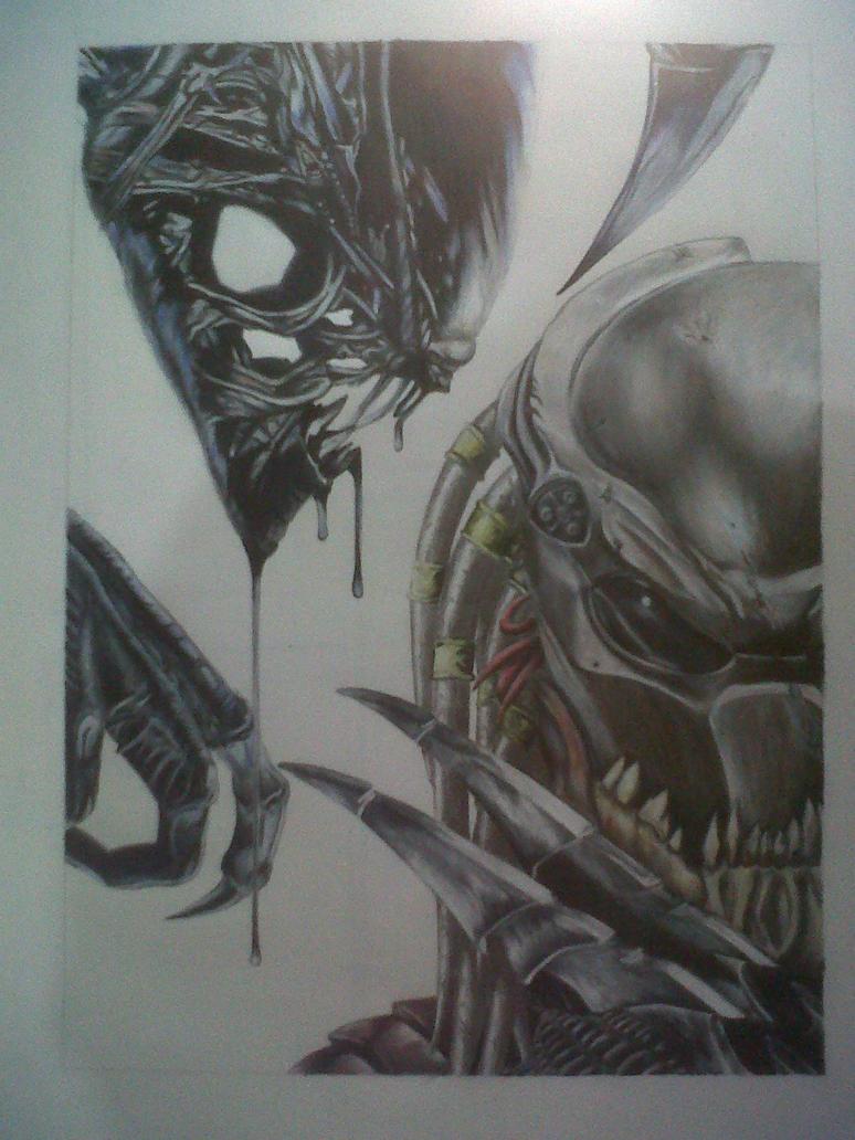 aliens vs predator drawings - photo #7