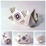 2011 package by Olga Cuzuioc