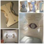 2012 creative package design Olga Cuzuioc