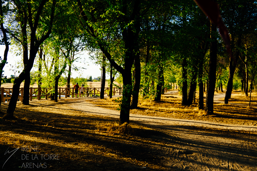 Walkings with the family by Inarita