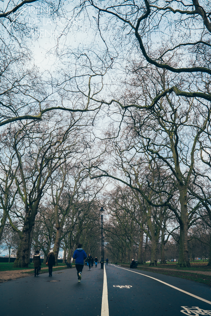 Hyde Park by Inarita