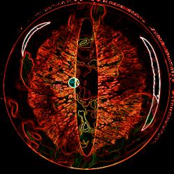 dragon eye w effects 2