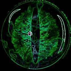 Dragon eye Green
