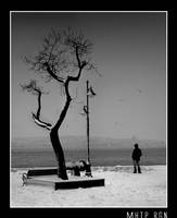 winter... by mhtp