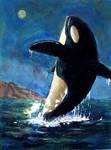 Orcinuz Orca