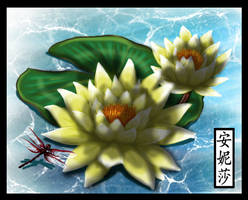 Enjoy Colouring's Lily Pad - Done
