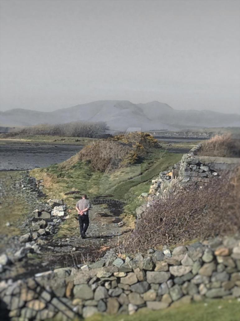 Irish Wanderer by wafagan14