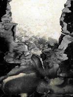 Abalone by pendlestock