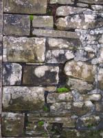 Sandstone Wall by pendlestock