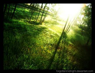 Morning by ForgottenMidnight
