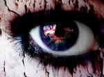 Candy coated- Eye